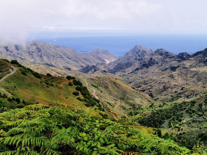 spain_tenerife_anaga_forest_canary_islands_thinkstockphotos-178397919